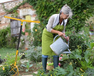 Kā atvieglot zemes apstrādi dārzā?