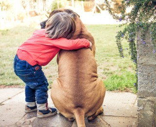 Gribu sunīti! Kā apsvērt visus par un pret