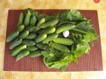 Mazsālīti gurķi - vasaras kraukšķīgais gardums