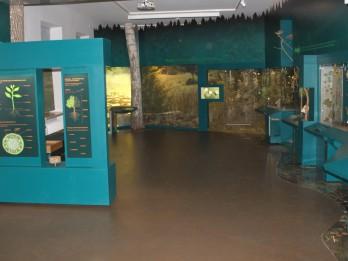 Pieci iemesli apmeklēt Dabas muzeju šonedēļ