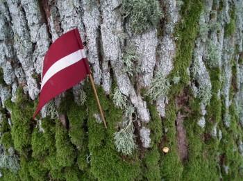 Latvijas individuālā gada prognoze