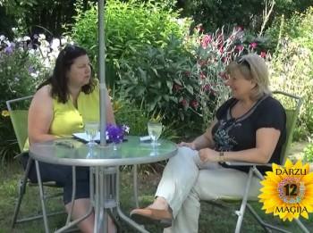 Video: Kā un kādu dārzu veidos Zivs? 12 DĀRZU MAĢIJA.