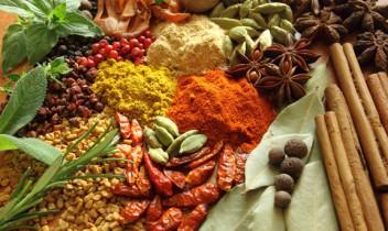 Garšaugi un garšvielas, to nozīme ēdiena gatavošanā
