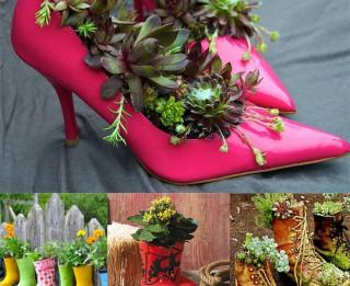 Foto: 15 interesantas idejas kaktusu un sukulentu audzēšanai