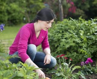Kā kopt un glabāt savus dārza darba rīkus