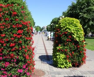 10 fakti par Jūrmalas tūristu iecienīto Jomas ielu