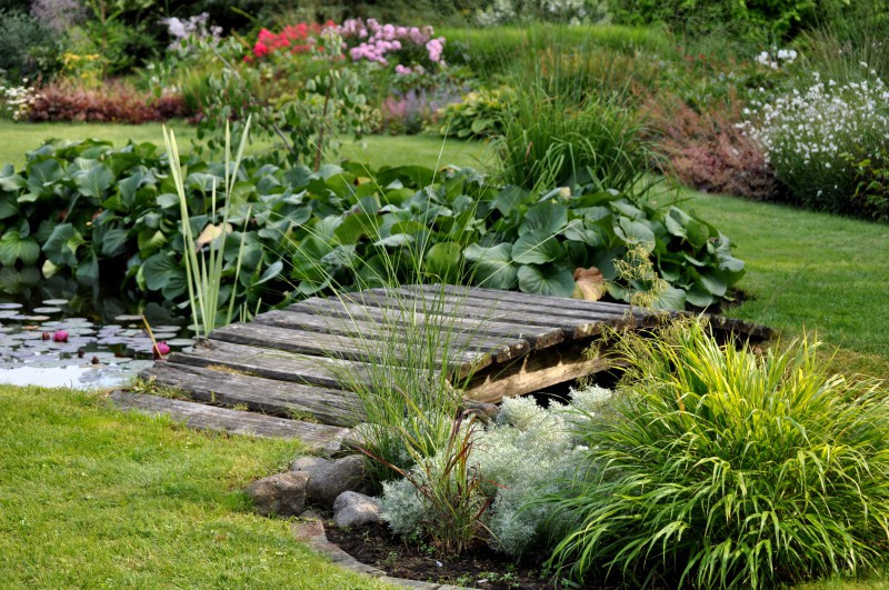 Ar ko īpašs Svaru dārzs? Astroloģija dārzā